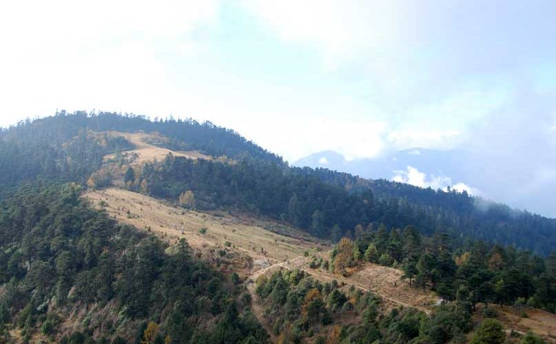 Trails on the mountain ridges - Druk Path Trek Bhutan