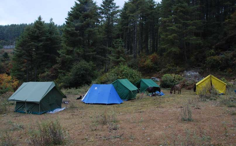 Campsite at Phajoding - Druk Path Trek, Bhutan