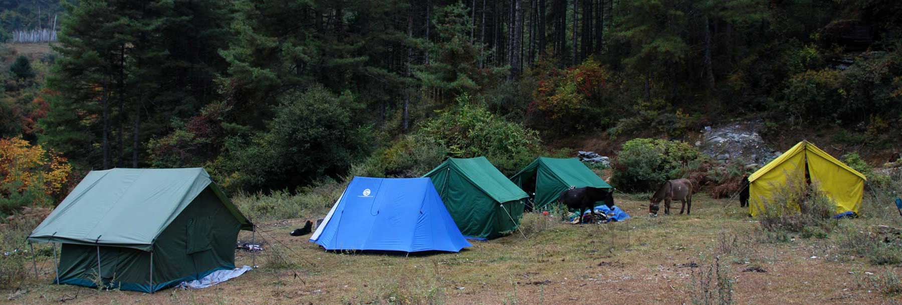 The last campsite of Druk Path Trek at an elevation of 3,750 meters above Thimphu