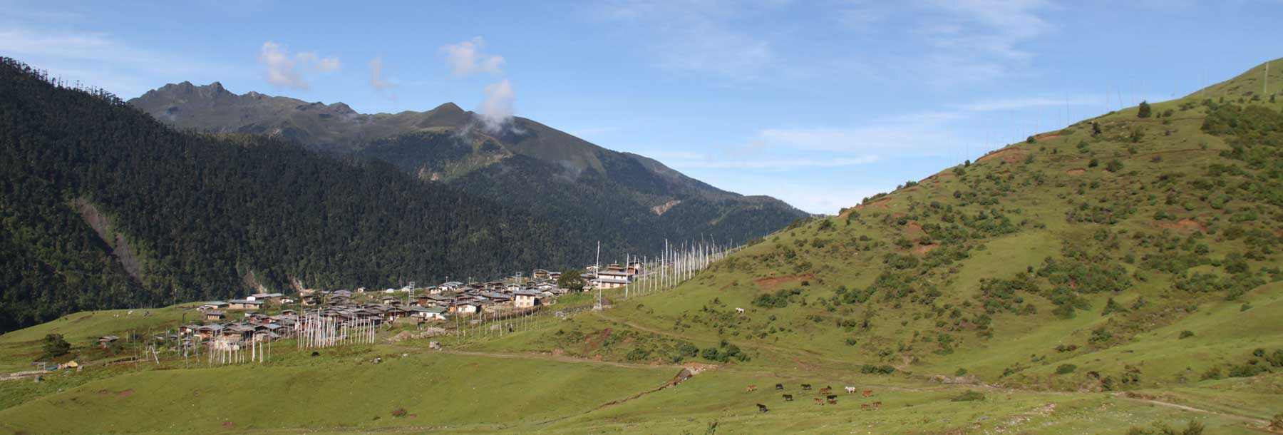 View of Merak village at an elevation of 3,500m/11,480ft.