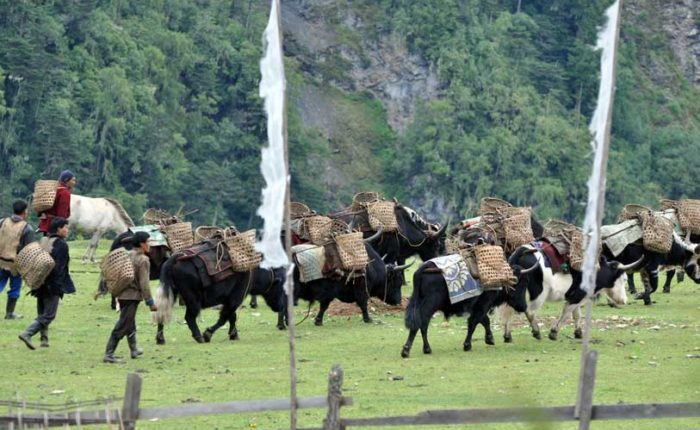 Tour to Merak, eastern Bhutan