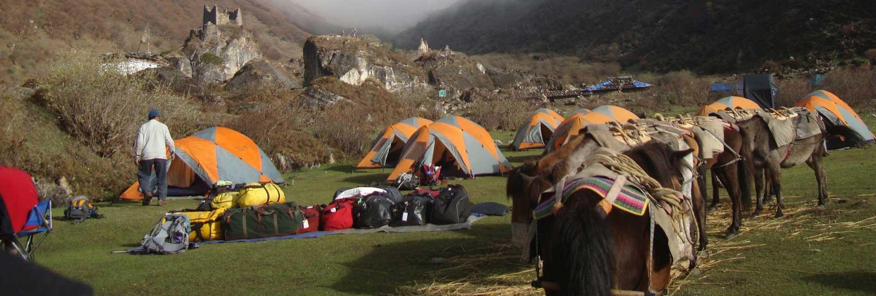 Jomolhari Trek, Bhutan.