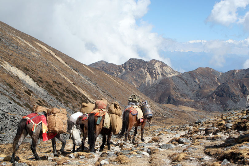 10 Days Dagala Thousand Lakes Trek in Bhutan. Trekking in Bhutan.