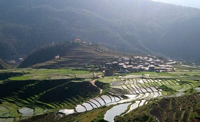 Chimi Lhakhang in Punakha - Bhutan Acorn Tours * Travel