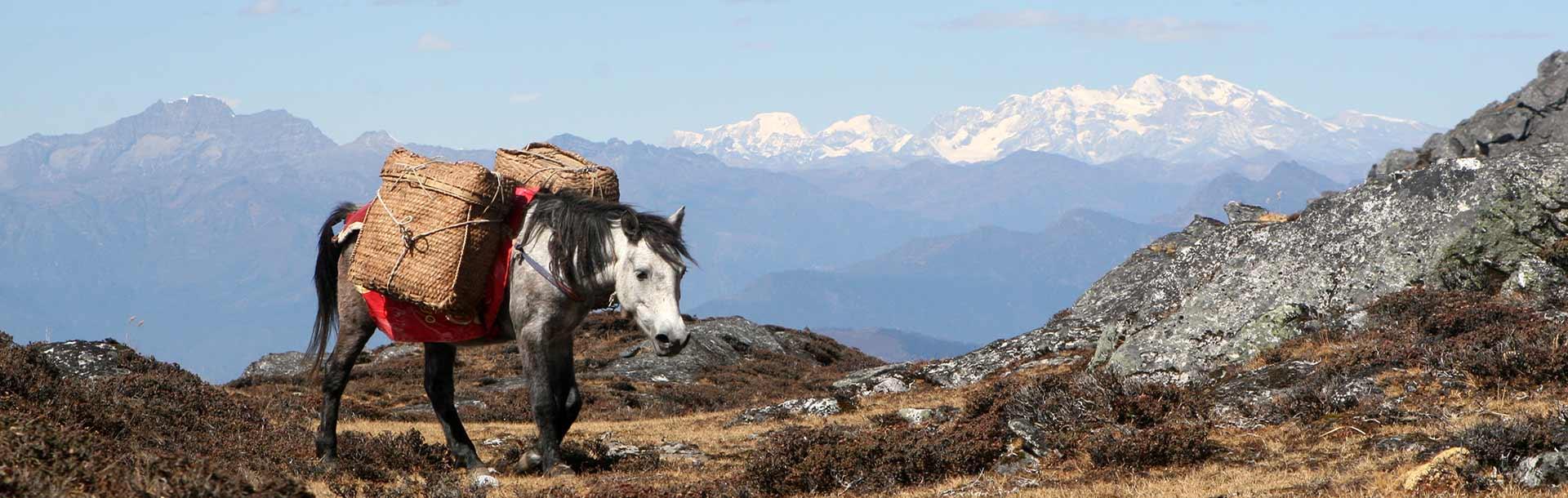 Trekking in Bhutan - Dagala Thousand Lakes Trek
