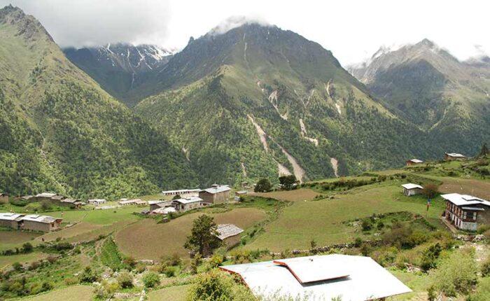 Laya Village