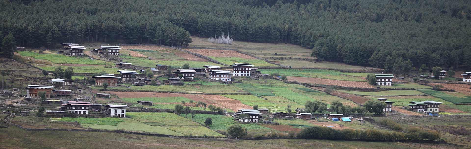 A village in Phobjikha valley